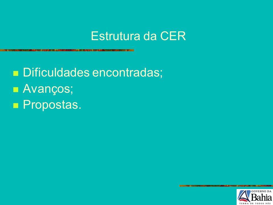 Estrutura da CER Dificuldades encontradas; Avanços; Propostas.