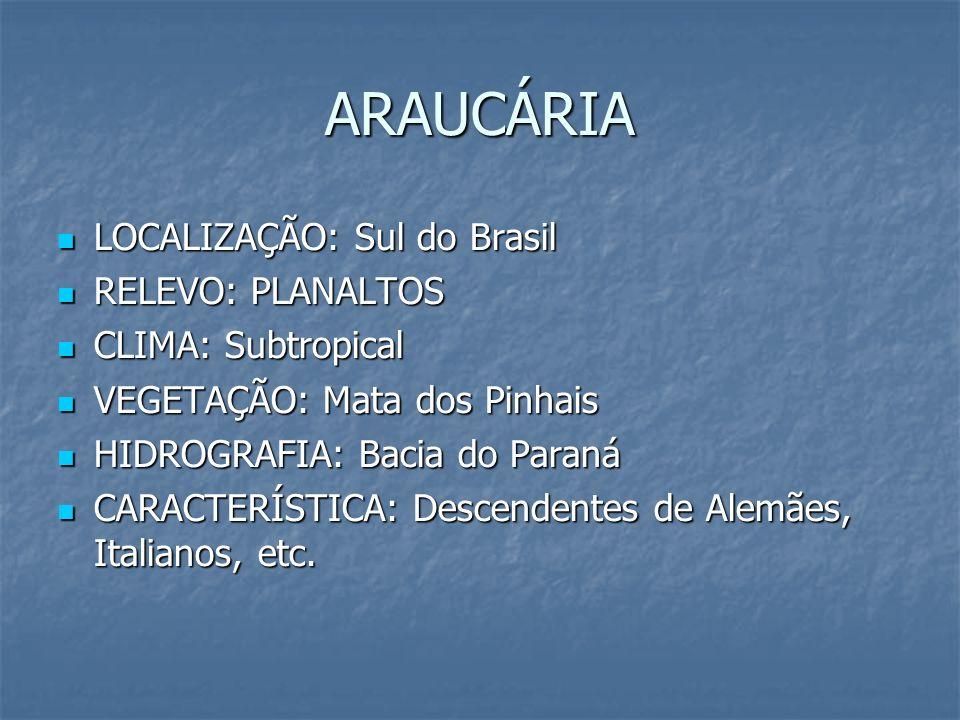 ARAUCÁRIA LOCALIZAÇÃO: Sul do Brasil RELEVO: PLANALTOS