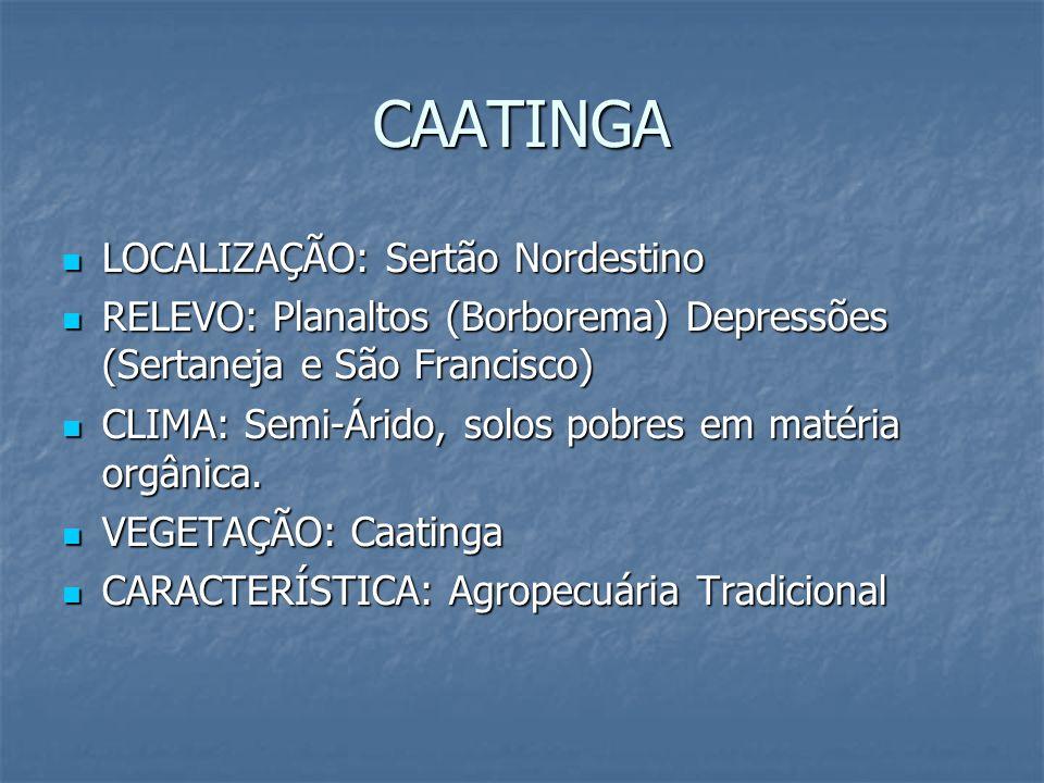 CAATINGA LOCALIZAÇÃO: Sertão Nordestino