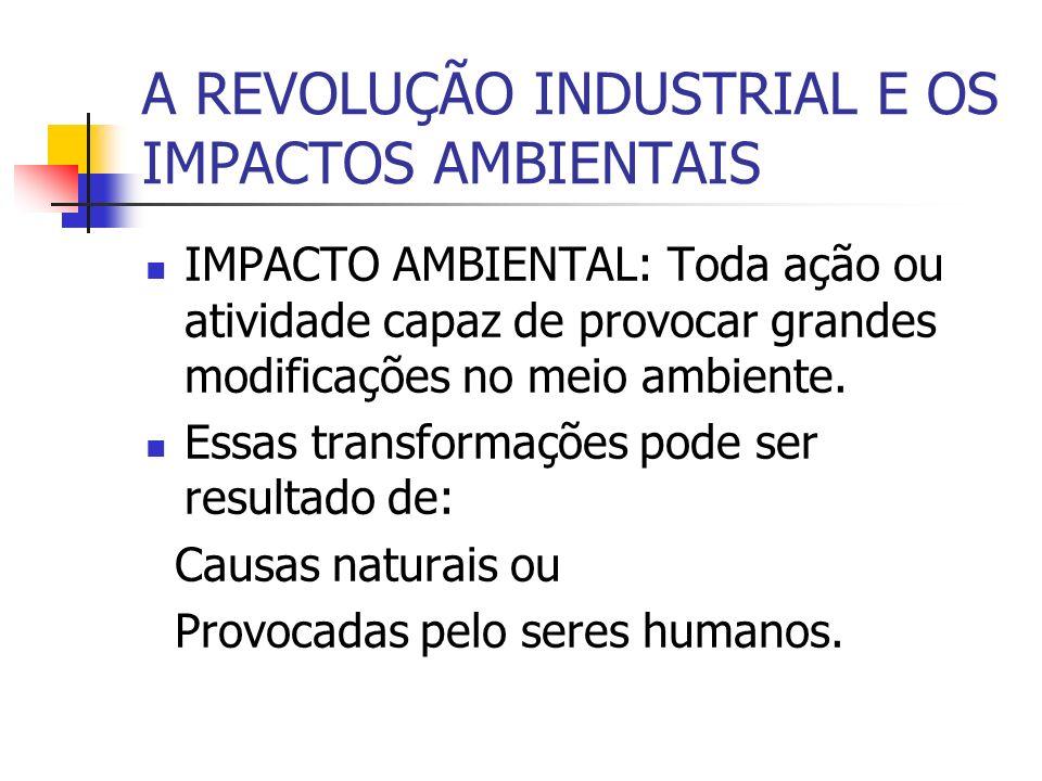 A REVOLUÇÃO INDUSTRIAL E OS IMPACTOS AMBIENTAIS