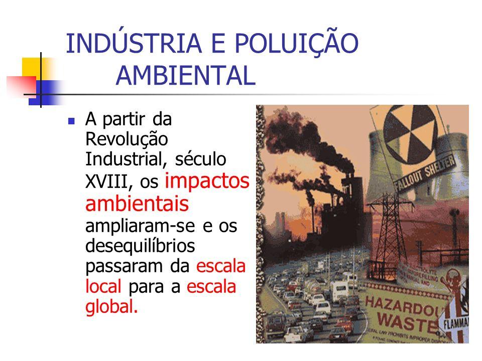 INDÚSTRIA E POLUIÇÃO AMBIENTAL
