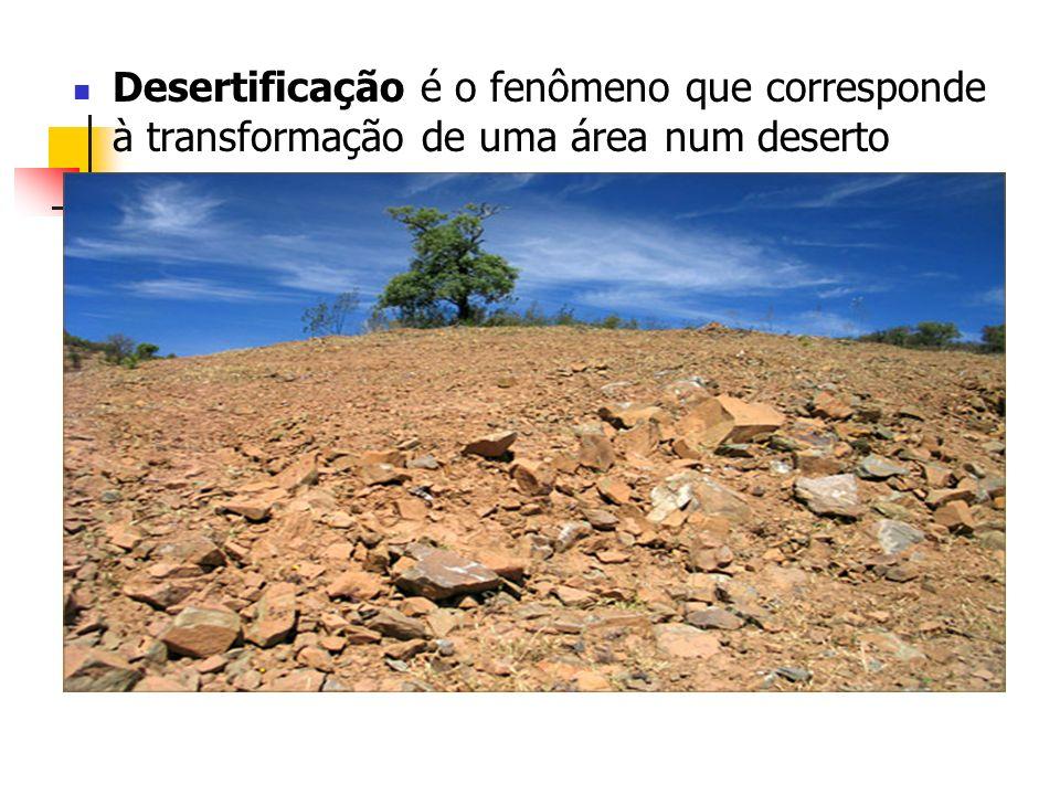 Desertificação é o fenômeno que corresponde à transformação de uma área num deserto