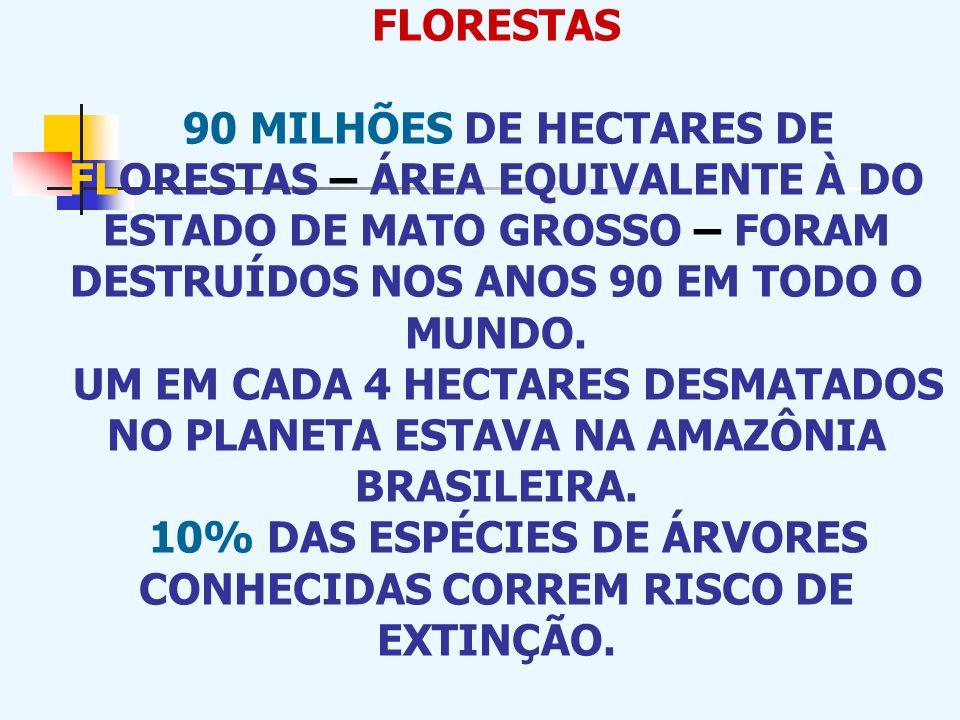FLORESTAS 90 MILHÕES DE HECTARES DE FLORESTAS – ÁREA EQUIVALENTE À DO ESTADO DE MATO GROSSO – FORAM DESTRUÍDOS NOS ANOS 90 EM TODO O MUNDO.