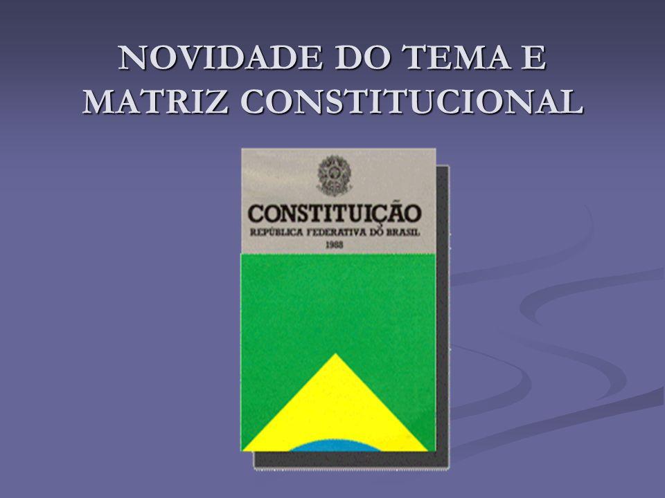 NOVIDADE DO TEMA E MATRIZ CONSTITUCIONAL