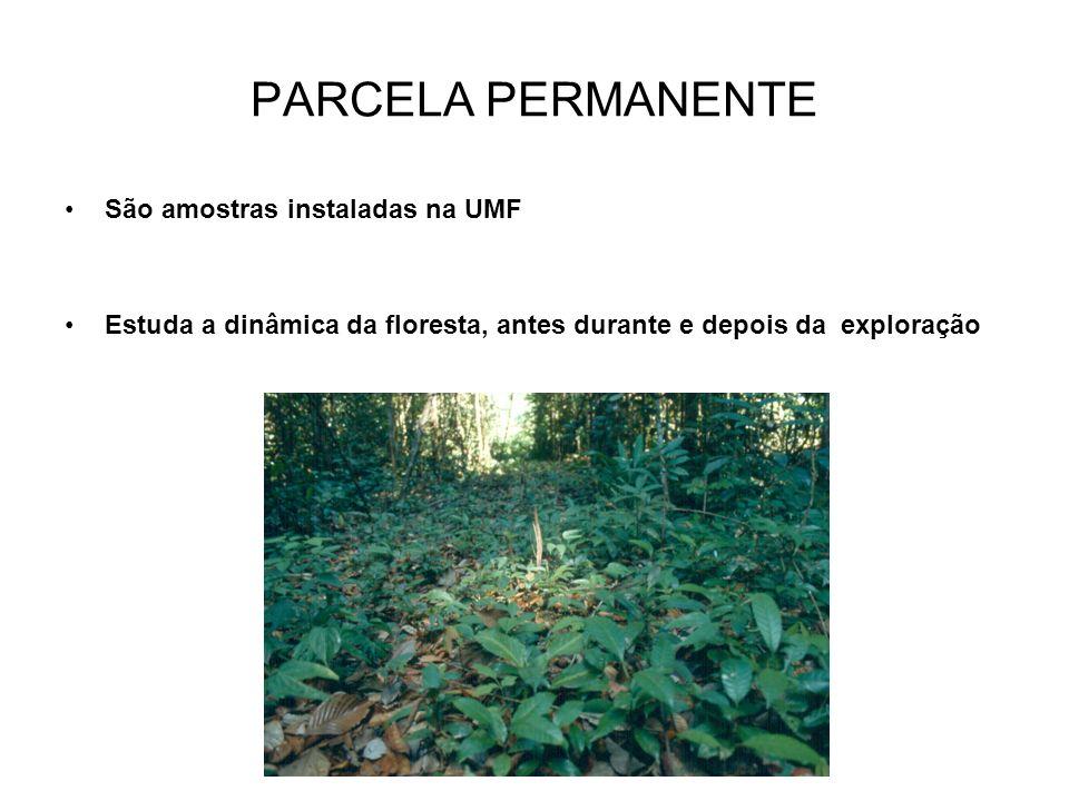 PARCELA PERMANENTE São amostras instaladas na UMF