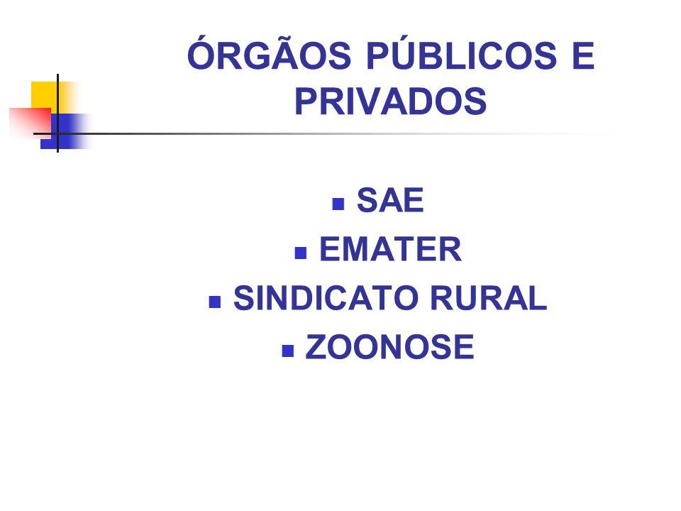 ÓRGÃOS PÚBLICOS E PRIVADOS