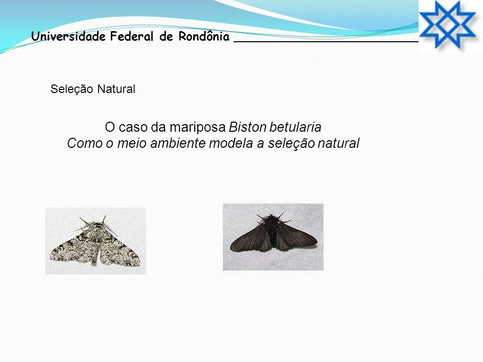 O caso da mariposa Biston betularia