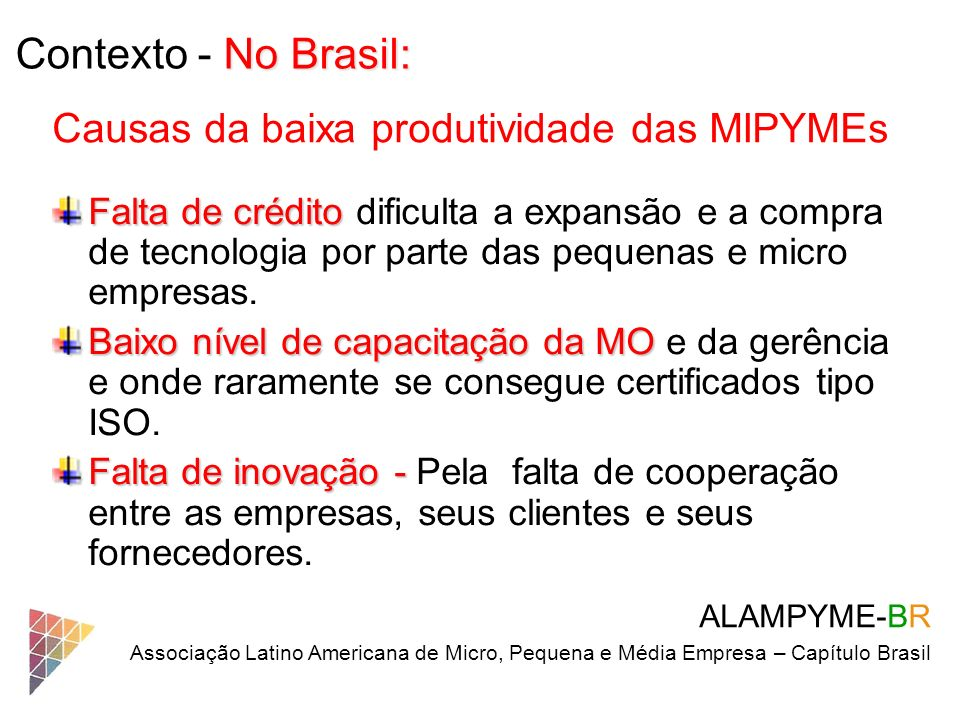 Contexto - No Brasil: Causas da baixa produtividade das MIPYMEs