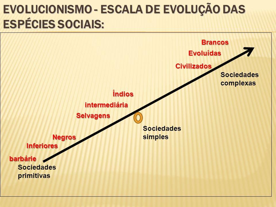 EVOLUCIONISMO - ESCALA DE EVOLUÇÃO DAS ESPÉCIES SOCIAIS: