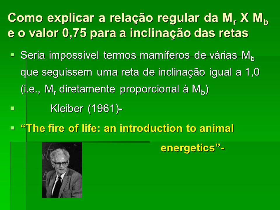 Como explicar a relação regular da Mr X Mb e o valor 0,75 para a inclinação das retas