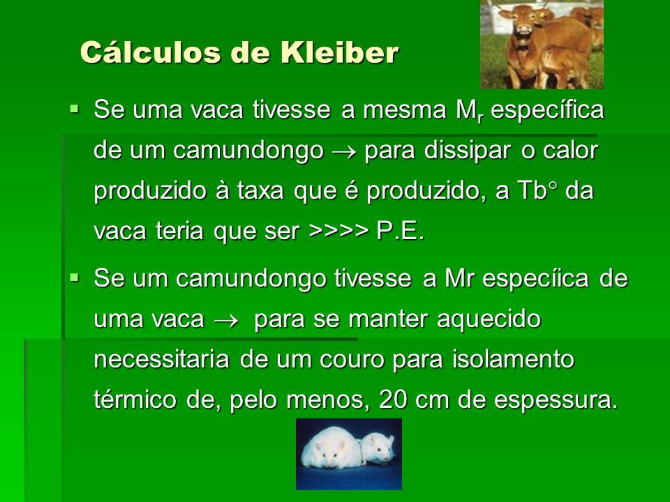 Cálculos de Kleiber