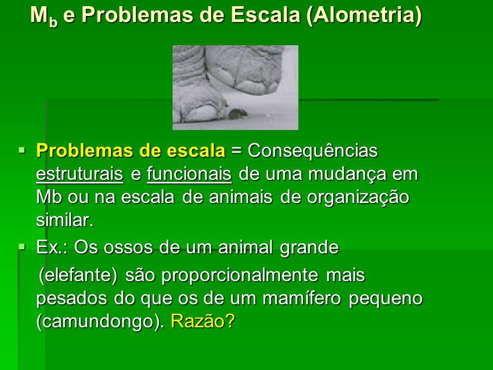 Mb e Problemas de Escala (Alometria)