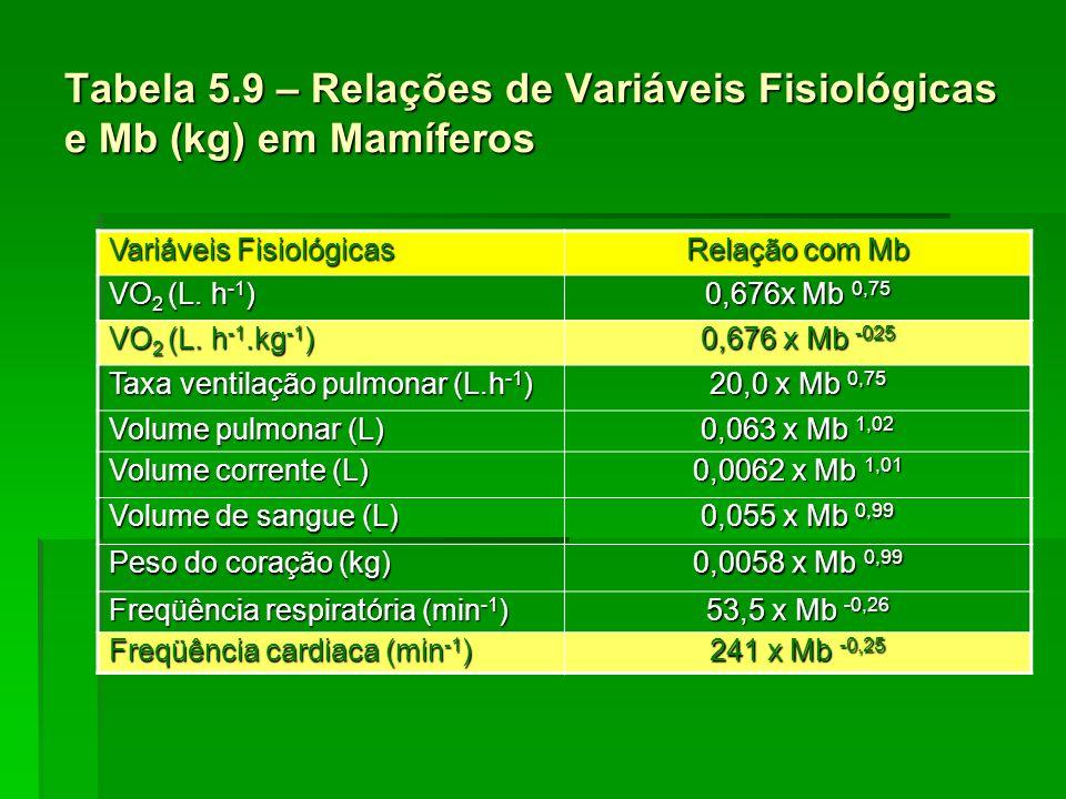 Tabela 5.9 – Relações de Variáveis Fisiológicas e Mb (kg) em Mamíferos