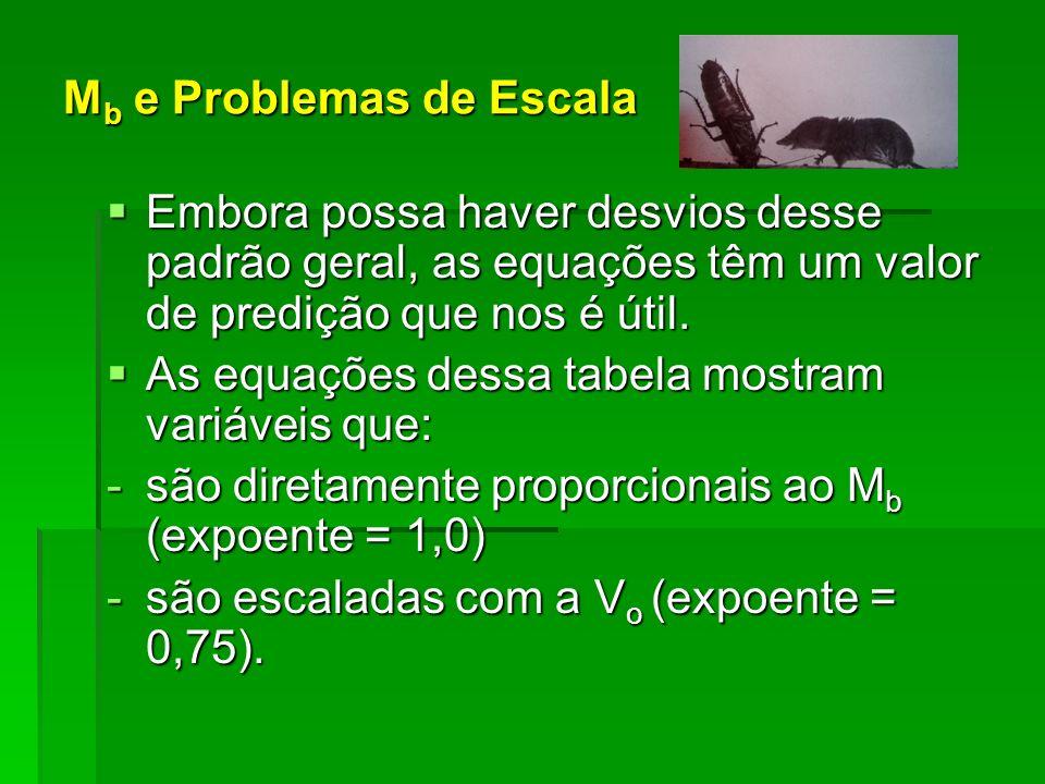 Mb e Problemas de Escala