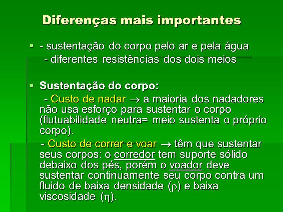 Diferenças mais importantes
