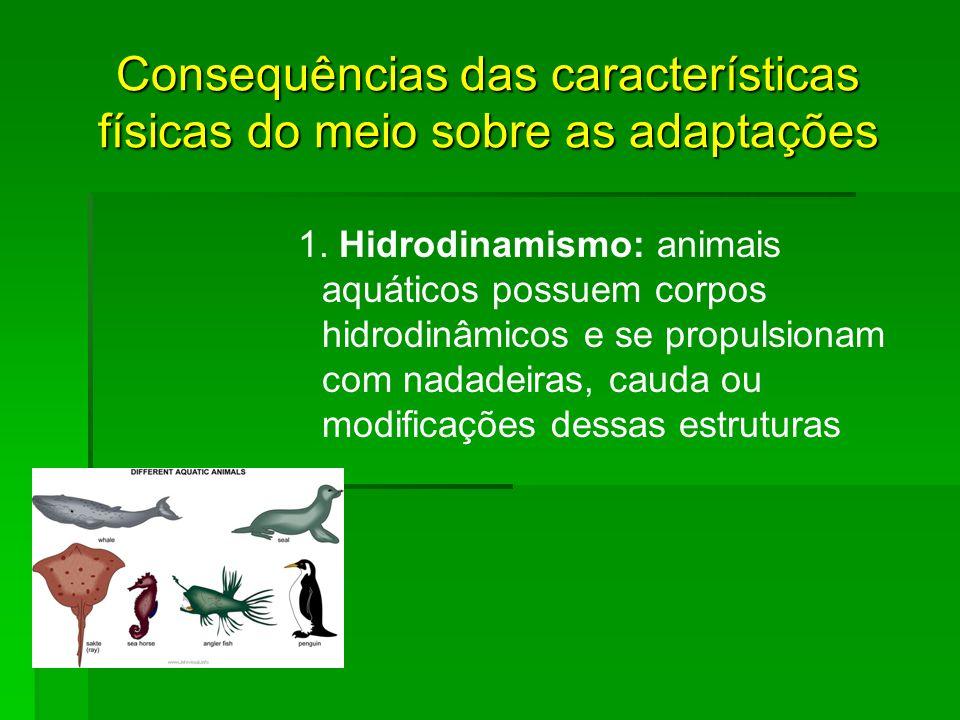 Consequências das características físicas do meio sobre as adaptações