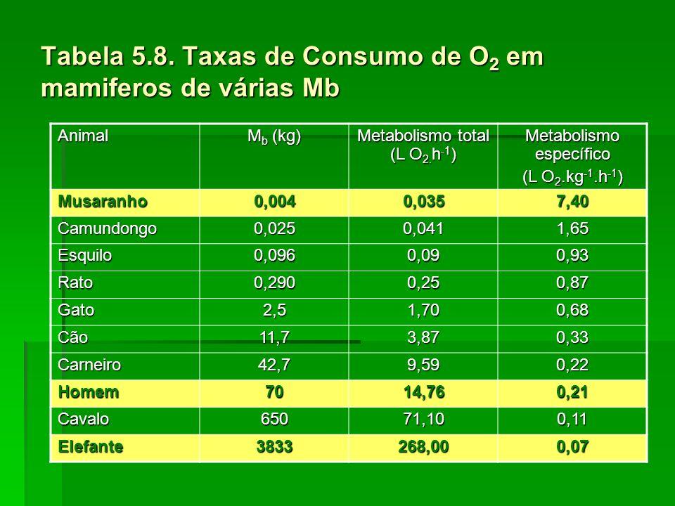 Tabela 5.8. Taxas de Consumo de O2 em mamiferos de várias Mb