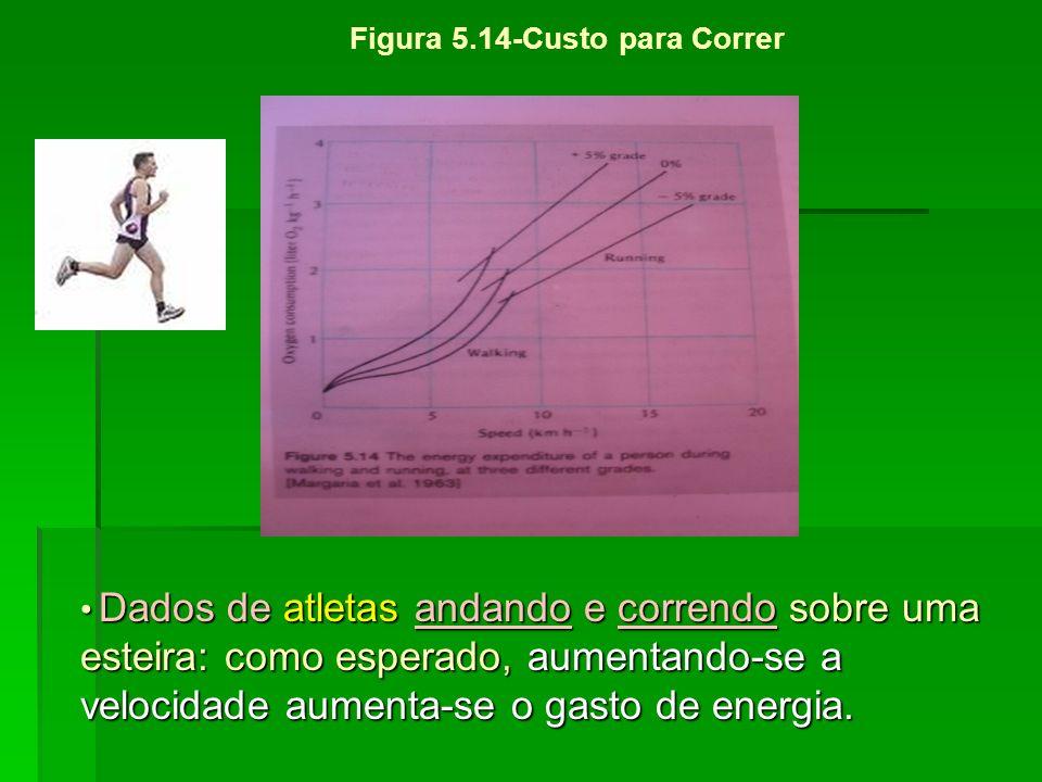 Figura 5.14-Custo para Correr