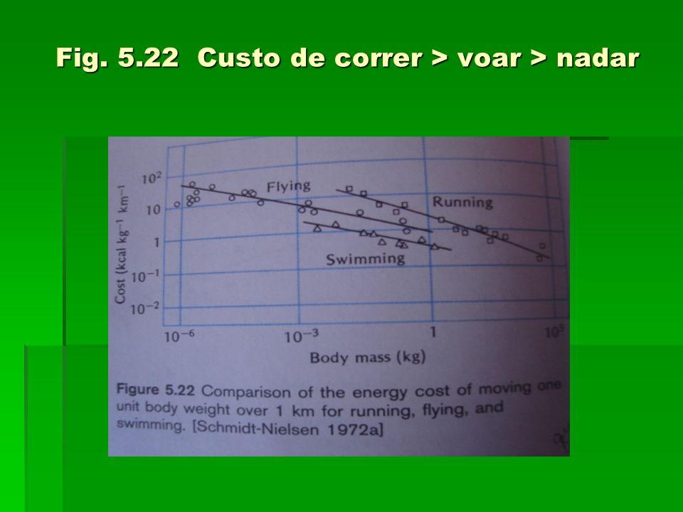 Fig. 5.22 Custo de correr > voar > nadar