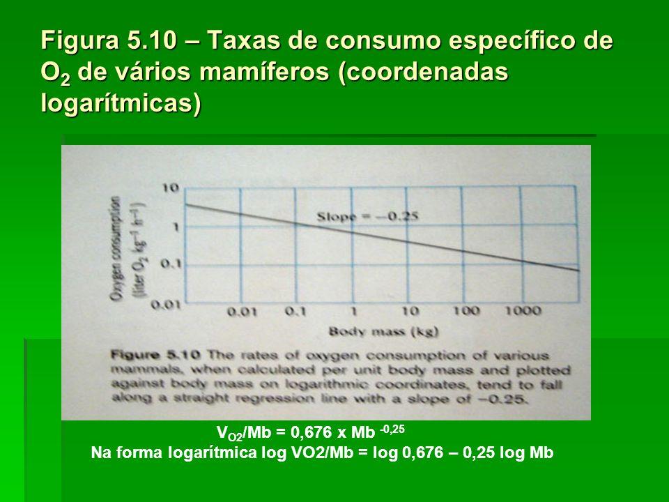 Na forma logarítmica log VO2/Mb = log 0,676 – 0,25 log Mb