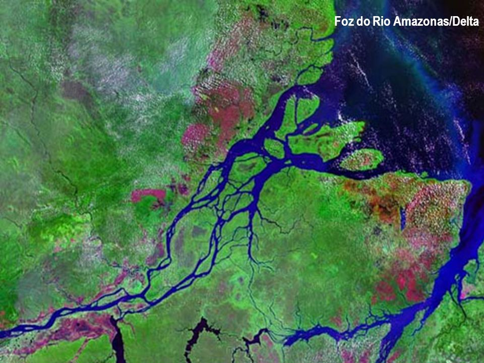 Foz do Rio Amazonas/Delta
