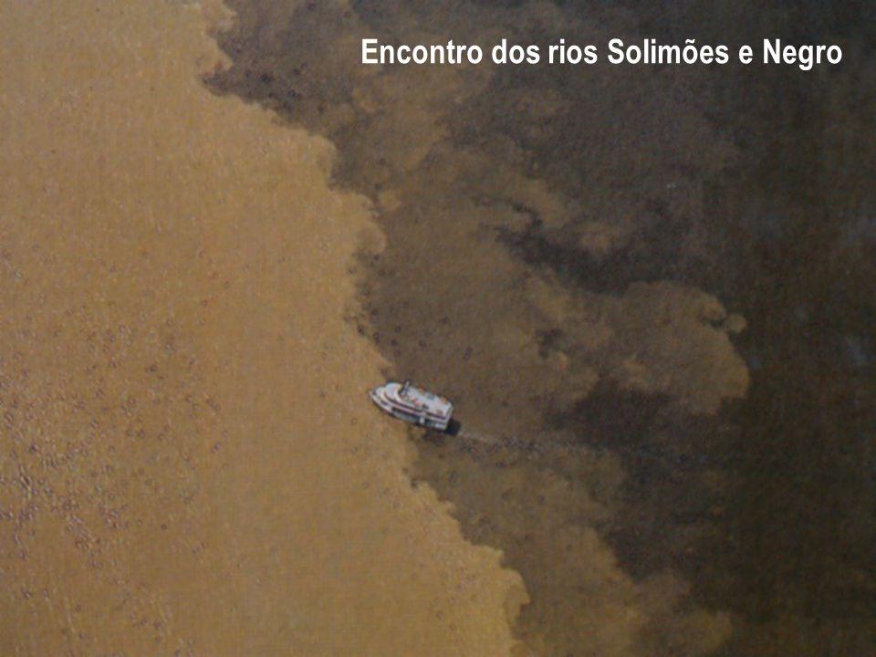 Encontro dos rios Solimões e Negro