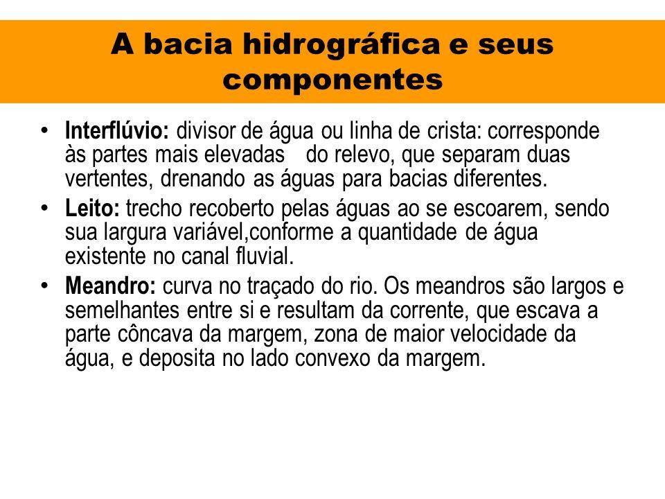 A bacia hidrográfica e seus componentes