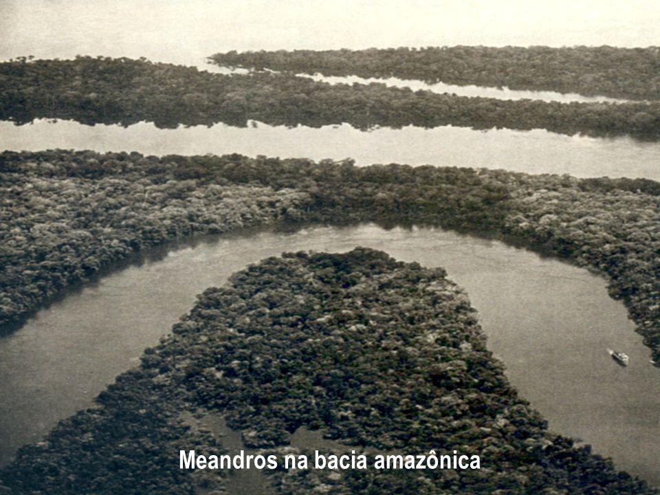 Meandros na bacia amazônica