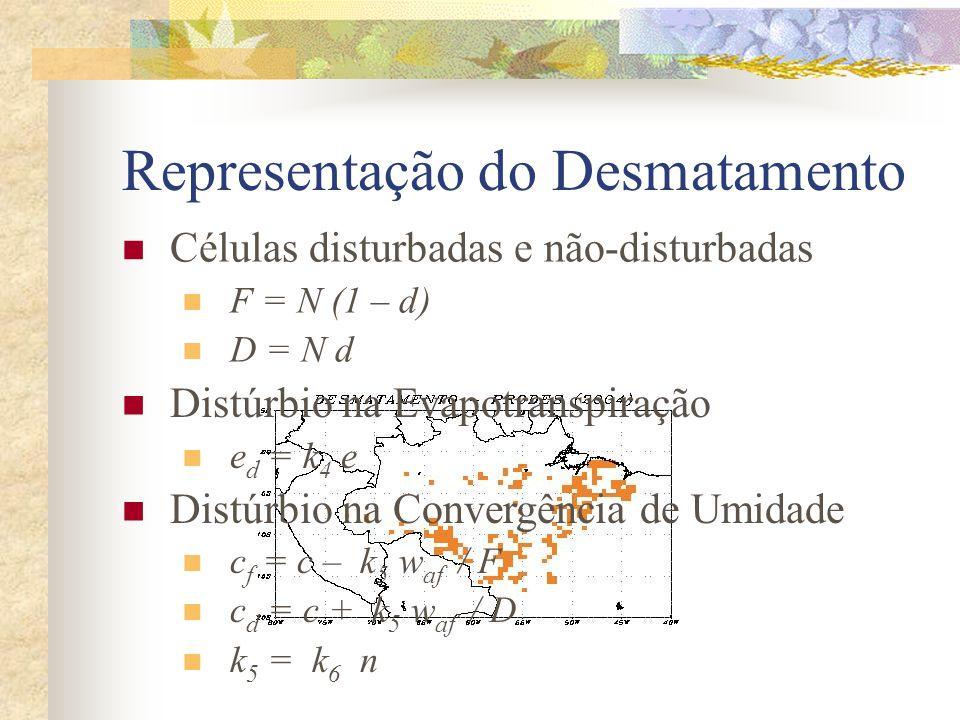 Representação do Desmatamento
