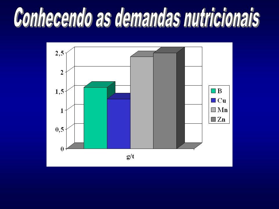Conhecendo as demandas nutricionais