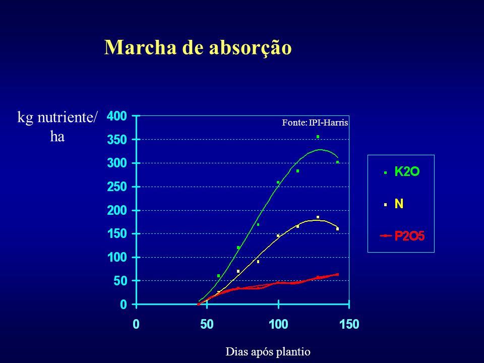 Marcha de absorção kg nutriente/ ha Dias após plantio