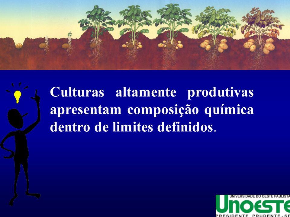Culturas altamente produtivas apresentam composição química dentro de limites definidos.