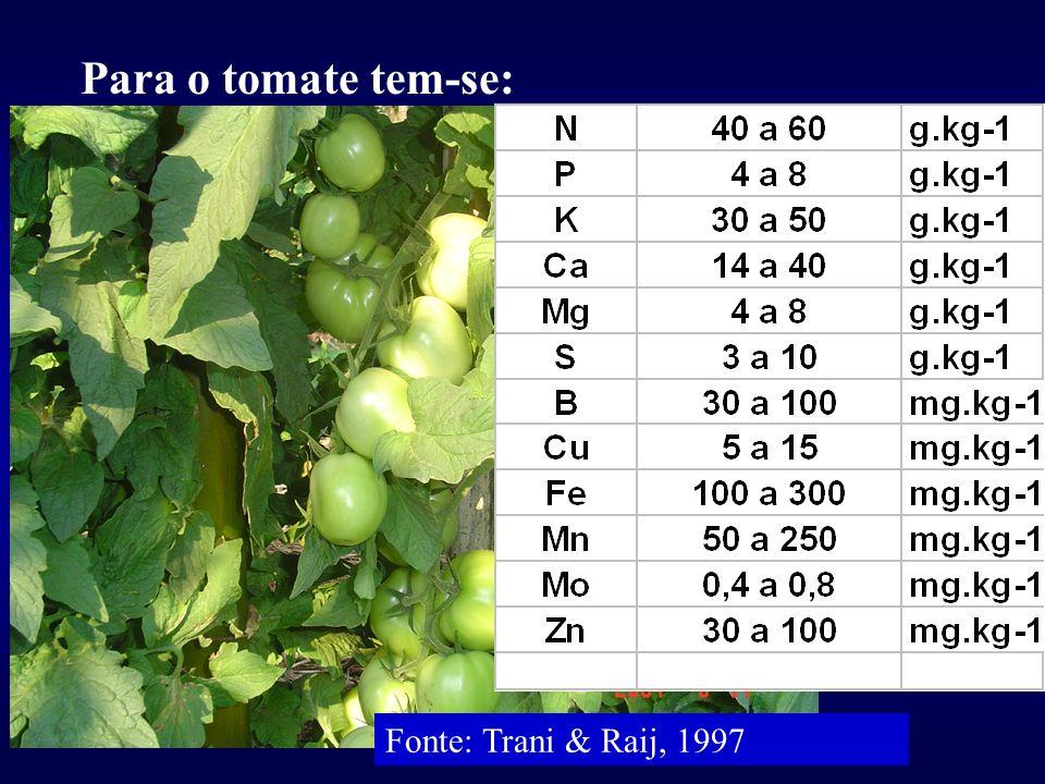 Para o tomate tem-se: Fonte: Trani & Raij, 1997