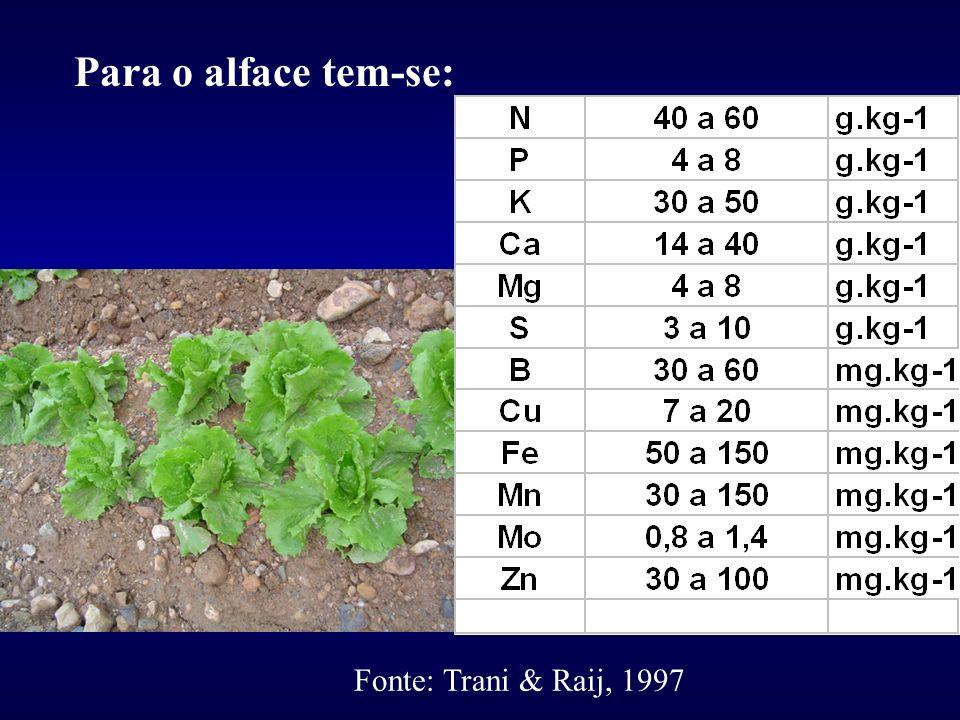Para o alface tem-se: Fonte: Trani & Raij, 1997