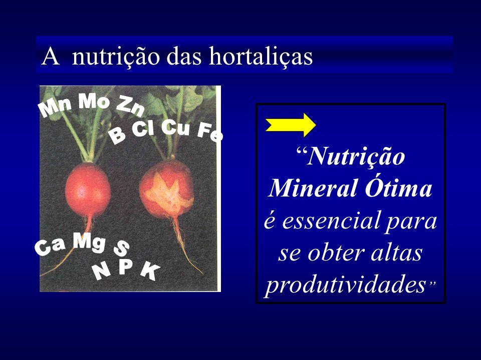 A nutrição das hortaliças