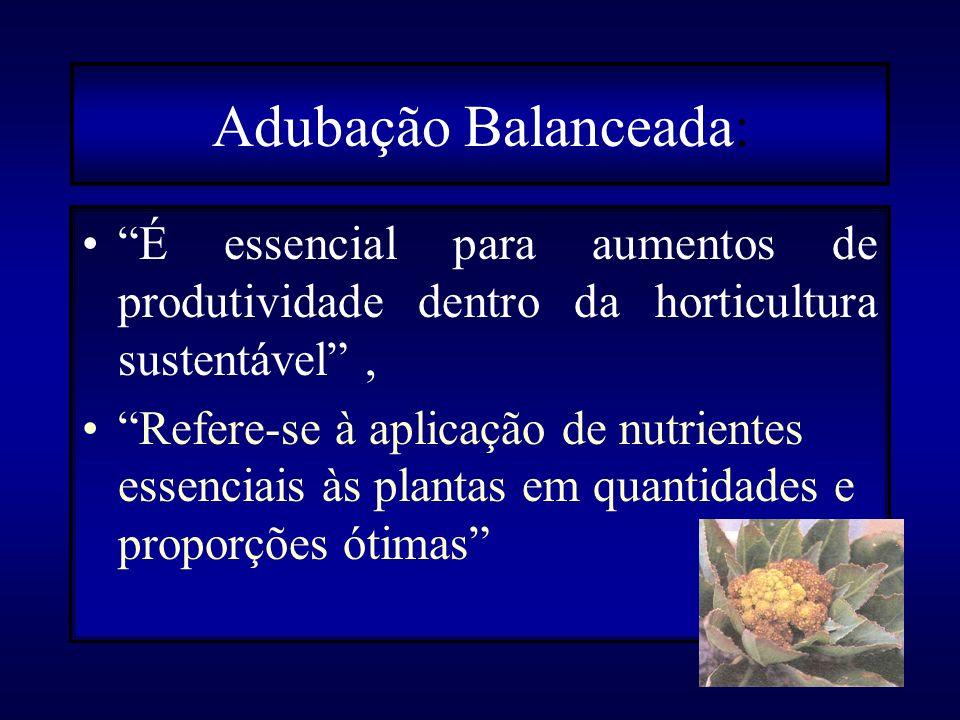 Adubação Balanceada: É essencial para aumentos de produtividade dentro da horticultura sustentável ,
