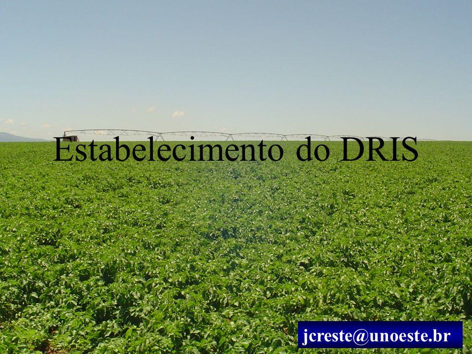 Estabelecimento do DRIS