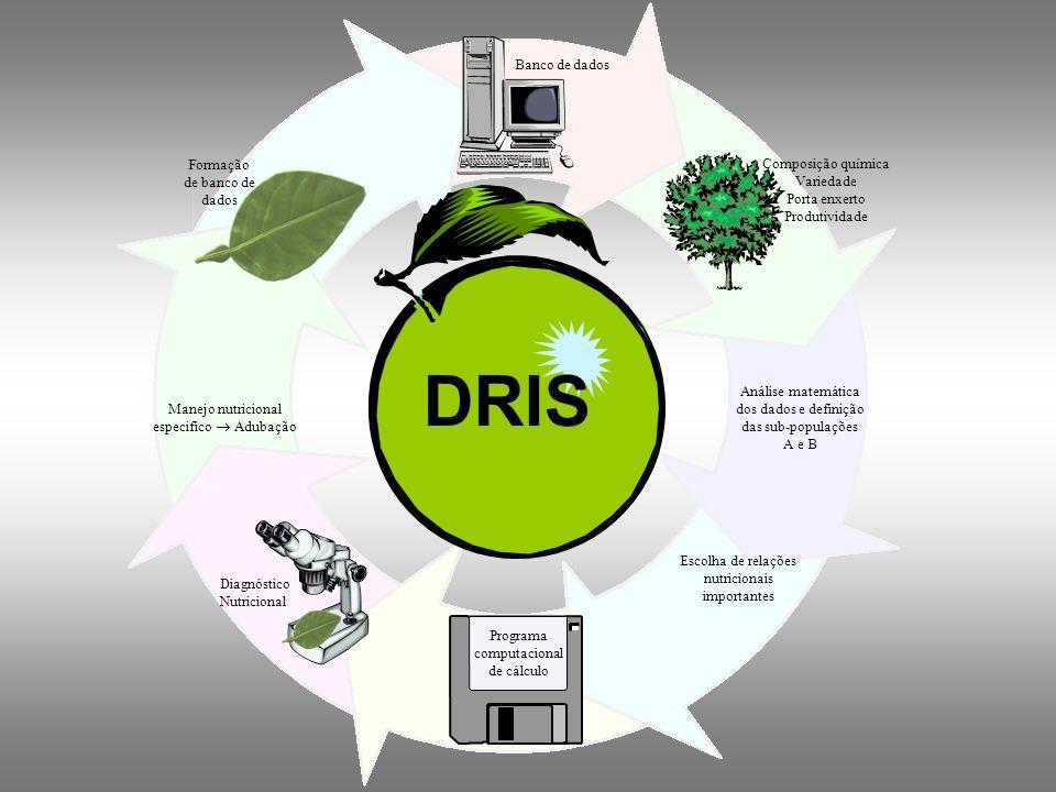 DRIS Banco de dados Formação de banco de dados Composição química