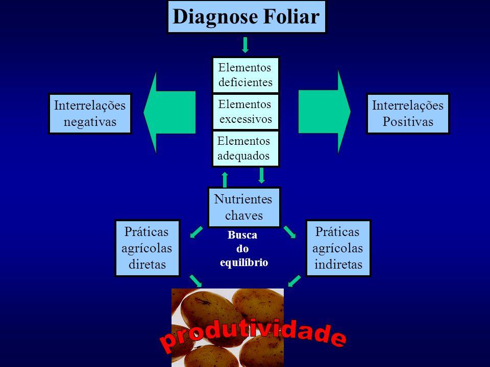 produtividade Diagnose Foliar Interrelações negativas Interrelações