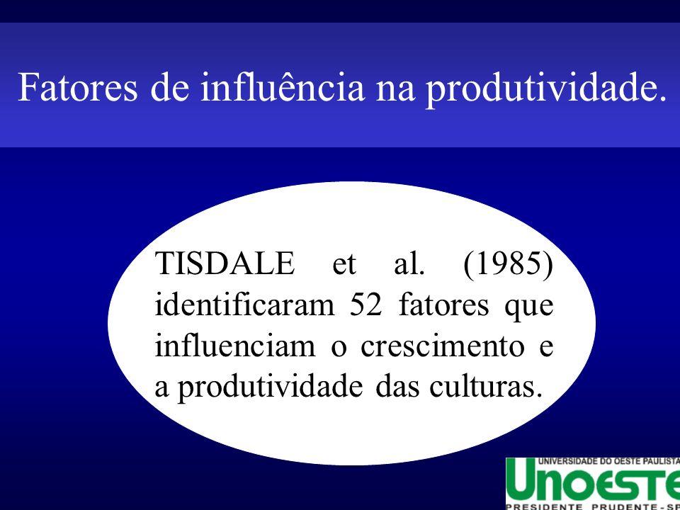 Fatores de influência na produtividade.