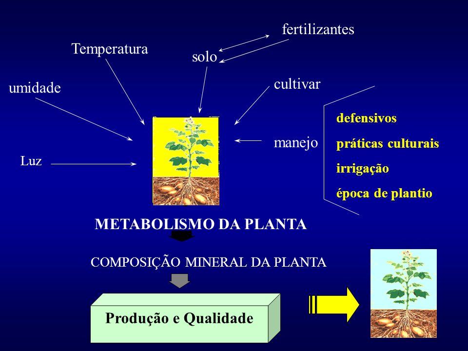 fertilizantes Temperatura solo cultivar umidade manejo