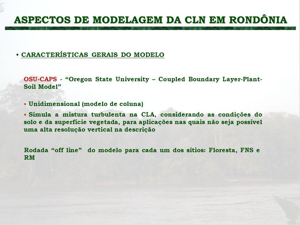 ASPECTOS DE MODELAGEM DA CLN EM RONDÔNIA
