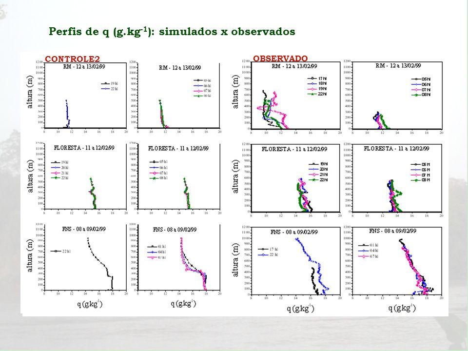 Perfis de q (g.kg-1): simulados x observados