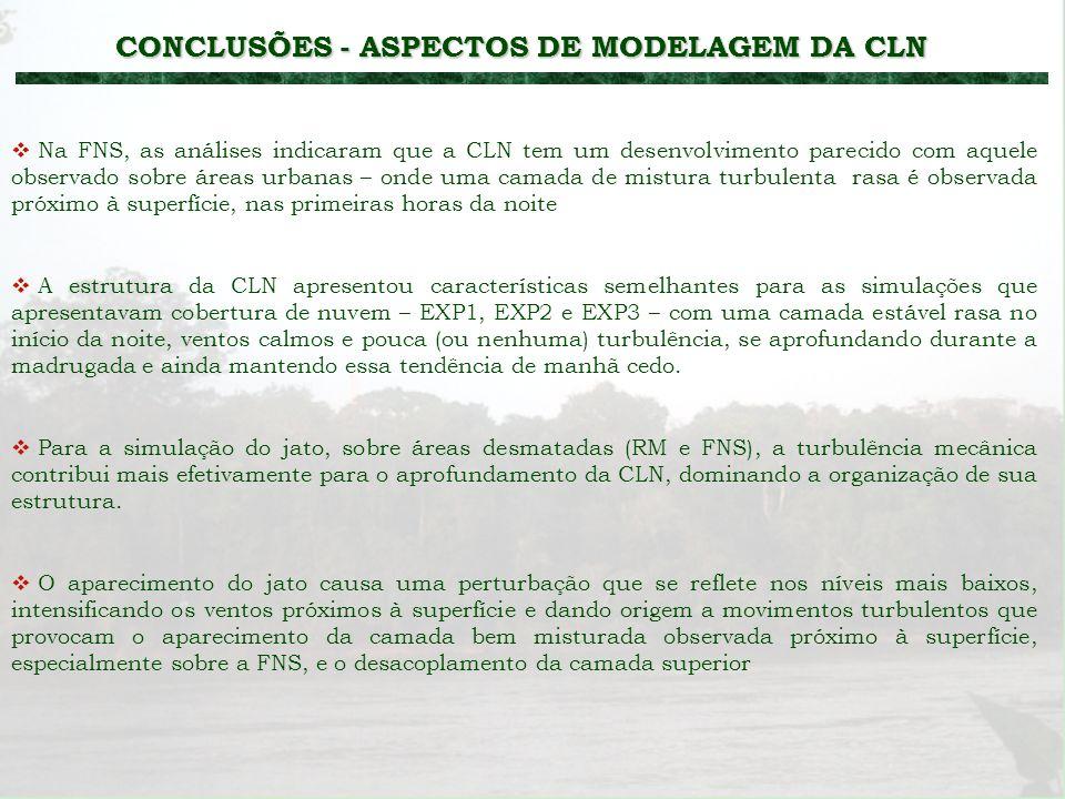 CONCLUSÕES - ASPECTOS DE MODELAGEM DA CLN