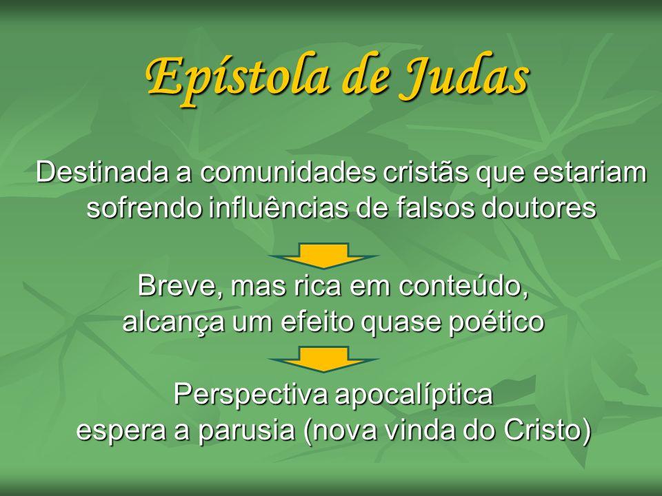 Epístola de Judas Destinada a comunidades cristãs que estariam sofrendo influências de falsos doutores.