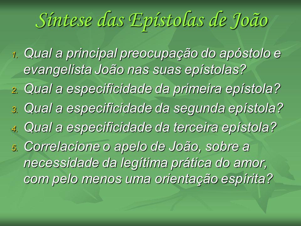 Síntese das Epístolas de João