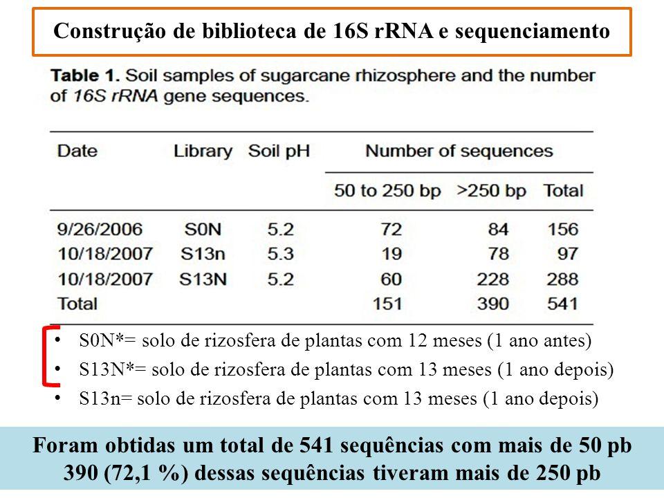 Construção de biblioteca de 16S rRNA e sequenciamento