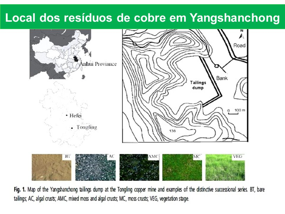Local dos resíduos de cobre em Yangshanchong