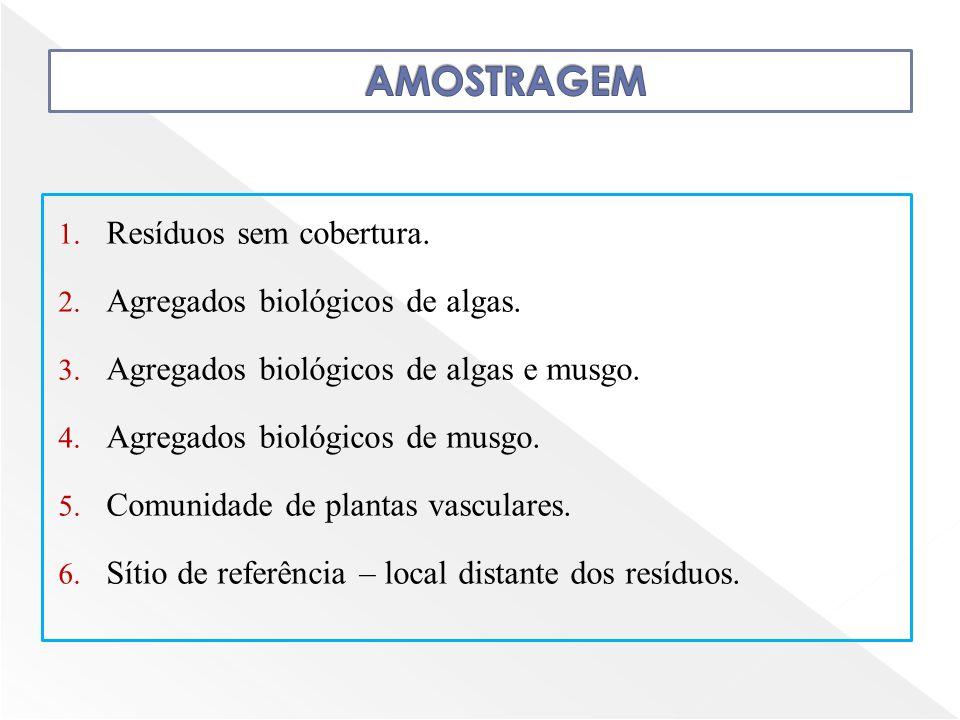 AMOSTRAGEM Resíduos sem cobertura. Agregados biológicos de algas.