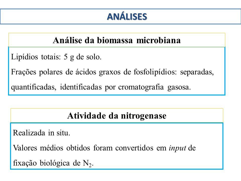 Análise da biomassa microbiana Atividade da nitrogenase